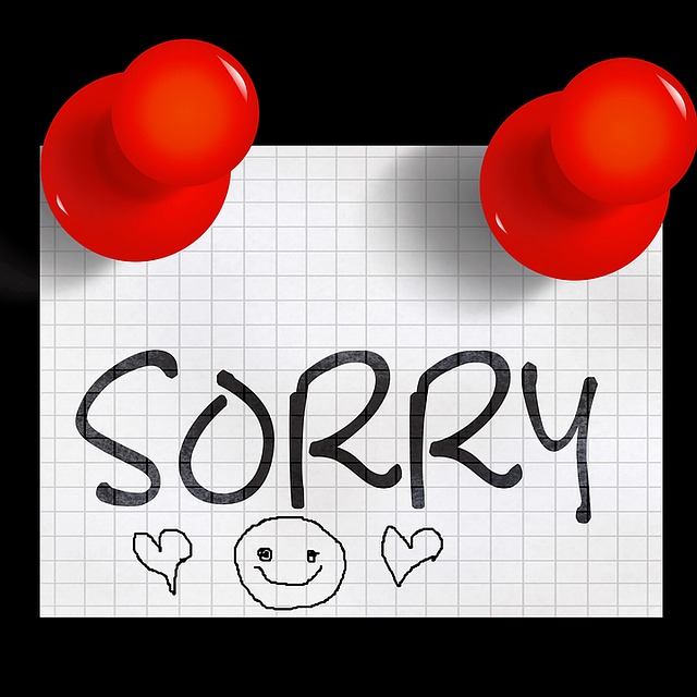 sorry-1356580_640